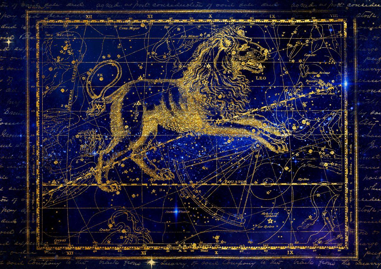 https://www.planetavenue.com/wp-content/uploads/2018/08/8-Lion-22.07-22.08-1280x905.jpg